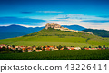 Aerial view of Spissky Castle in Slovakia 43226414
