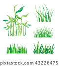 Backgrounds of Green Grass Isolated Vector 43226475