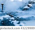 Yubatake of Kusatsu hot spring 43229989