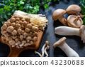 蘑菇 食品 原料 43230688