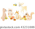 Only bear squirrel bee acorns acorns raccoon fox hand-painted watercolor transparent watercolor painting 43231686