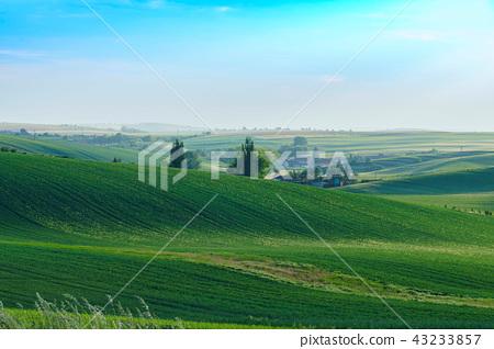 남모라비아평원, 키요프, 이탈리아 43233857