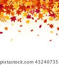 秋天 秋 背景 43240735