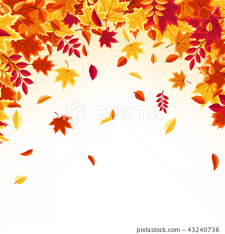 Autumn falling leaves. Nature background with red, orange, yellow foliage. Flying leaf. Season sale 43240736
