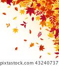 秋天 秋 背景 43240737