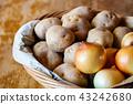 감자와 양파 43242680