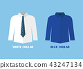 White and Blue shirt vector illustraton 43247134