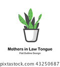 Mothers in law tongue Outline Flat illustration 43250687
