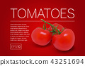 Three ripe red tomatoes on a branch 43251694