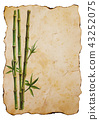 Green bamboo plants on old brown paper background 43252075