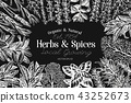 Culinary herbs and spices banner template. Vector background for design menu, packaging, recipes 43252673