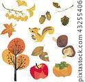 各種各樣的秋季收藏 43255406