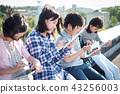 IT教育圖像素描 43256003