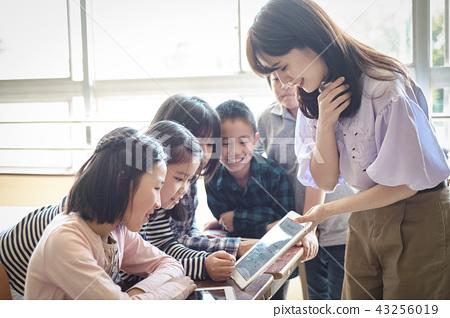 Elementary school IT education class scenery 43256019