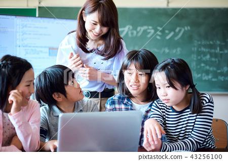 小学IT教育课风景 43256100