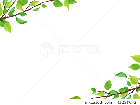 Fresh Green Leaf Png Permeable Stock Illustration 43258642 Pixta If you're thinking of using leaf png on a website, i suggest you reduce the size first. https www pixtastock com illustration 43258642