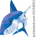 鯊魚 只盯 殘暴 43258952