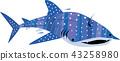 鯨鯊 鯊魚 圓點花紋 43258980