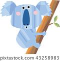 koala bear, koala, climbing on trees 43258983