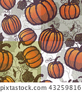 Vector seamless pattern with pumpkin crop collection 43259816