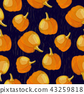 Vector seamless pattern with pumpkin crop on dark background 43259818