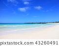 이라부 섬, 이라부지마, 바다 43260491