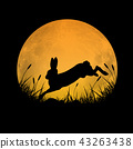 Rabbit jumping over grass field with full moon 43263438
