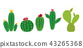 Cactus Icon Collection Set Vector Illustration 43265368