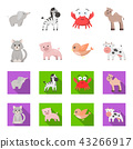 An unrealistic cartoon,flat animal icons in set collection for design. Toy animals vector symbol 43266917