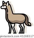 Alpaca LineColor illustration   43268317