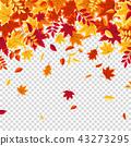 秋天 秋 背景 43273295