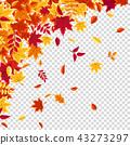 秋天 秋 背景 43273297