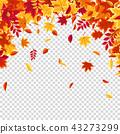 秋天 秋 背景 43273299