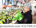 Florists woman working in greenhouse.  43276814