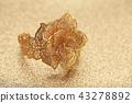 gold rose flower ring on glitter background 43278892