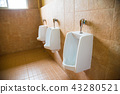 White urinals of the men's toilet 43280521