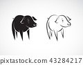 Vector of little pig design on a white background. 43284217