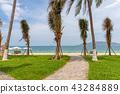 Nha Trang beach, Vietnam 43284889