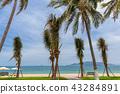 Nha Trang beach, Vietnam 43284891