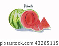 Summer watermelon sliced isolated. 43285115