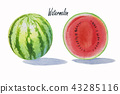 Summer watermelon sliced isolated. 43285116