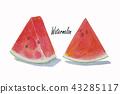 Summer watermelon sliced isolated. 43285117