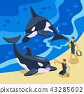 Sea Circus Isometric Background 43285692