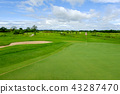 Green fairway and blue sky in Golf course 43287470