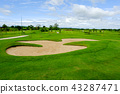 Green fairway and blue sky in Golf course 43287471