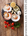 Delicious raw scallops in a shell and tomatoes 43289516