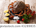 Seafood background 43289835