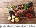 Gourmet food 43289842