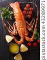Delicious food 43289971