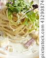 意大利面 義大利麵 奶油麵食 43290874